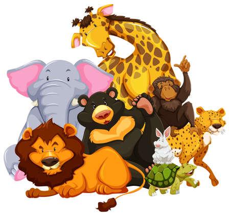 wild living: Group of wild animals sitting together on white background Illustration