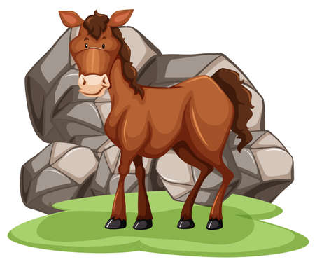 grass close up: Close up brown horse standing on the grass Illustration
