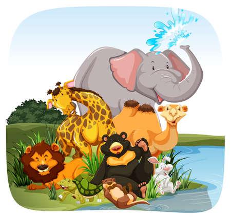 nutria caricatura: Animales que se sientan en la orilla de un río Vectores