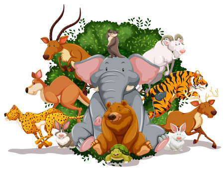 Many animals living together in the jungle Vector