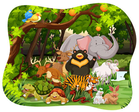 forest clipart: Many wildlife living together in the jungle
