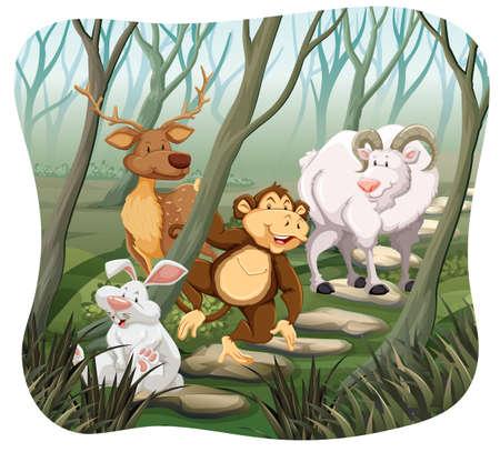 animales silvestres: Los animales salvajes que viven en la selva Vectores