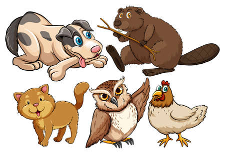 cute animals: Cute animals on a white background Illustration