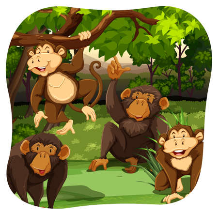 Four monkeys sitting on the grass in a forest