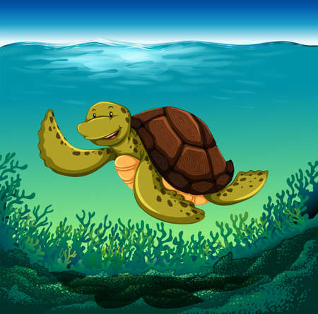 seabed: Sea turtle swimming in the ocean with reef on the seabed