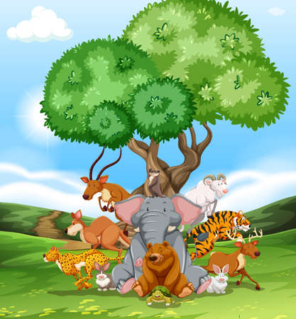 Group of wild animals together in the field Vector