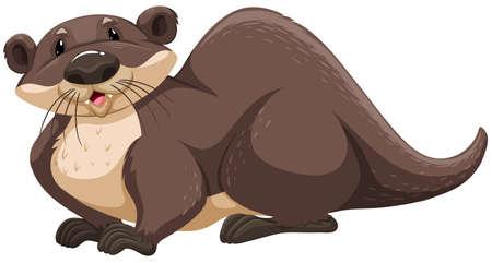 otter: Brown otter sitting on white background