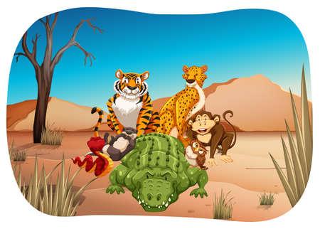 nutria caricatura: Animales salvajes en el medio de un desierto