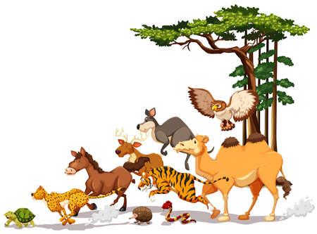 Wilde dieren in een race competitie