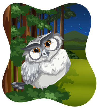 night: Cute owl in the forest at night Illustration