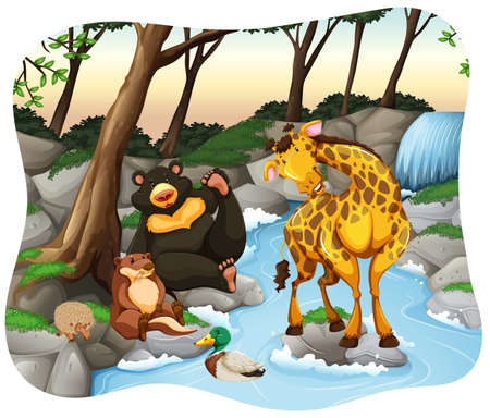 Wild animals at the stream in the jungle Vector