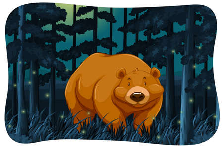 carnivores: Brown bear and fireflies in the jungle at night Illustration