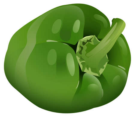 close up food: Green bell pepper with the stem on Illustration