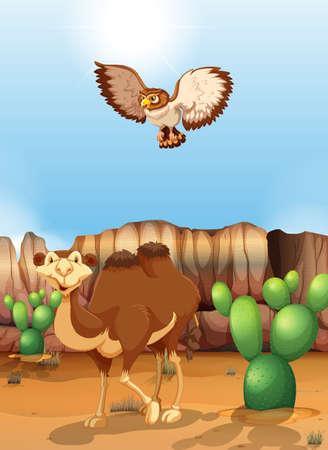 birds desert: Camel and owl in the desert at daytime Illustration