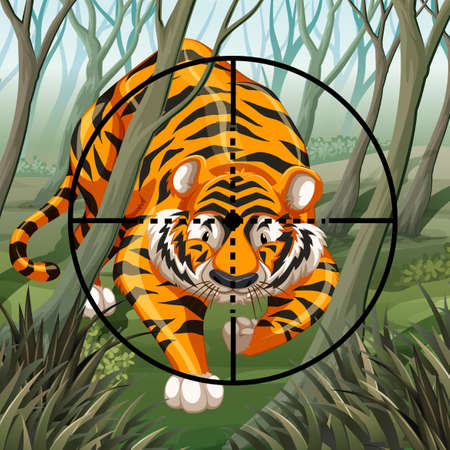 riffle: Aim of a riffle on a walking tiger in a forest