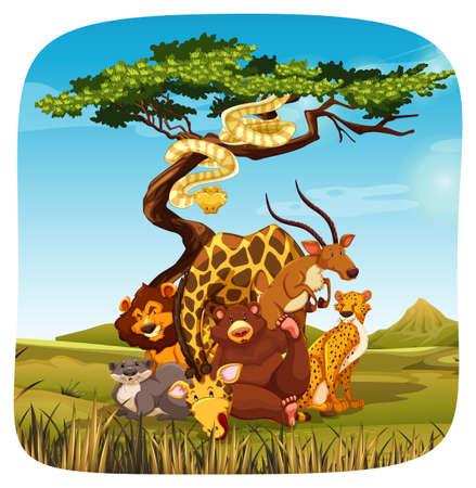 nutria caricatura: La vida salvaje en un safari con un fondo blanco Vectores
