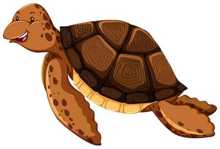 endangered: Cute ocean turtle swimming alone