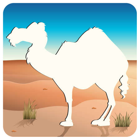 dryness: Cutout of camel standing in the desert