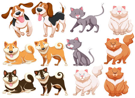 cat drawing: Diferentes pecies de perros y gatos