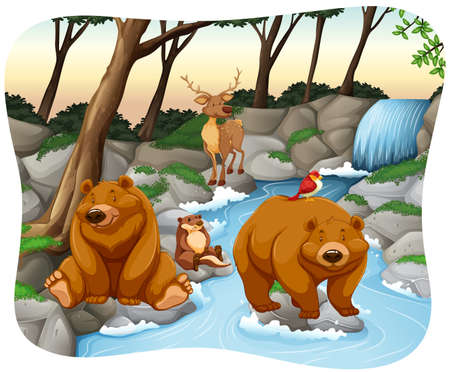 wild living: Wild animals relaxing at the waterfall Illustration