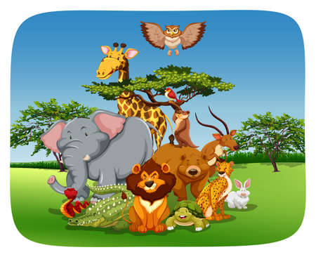 lion clipart: Wild animals sitting in the field