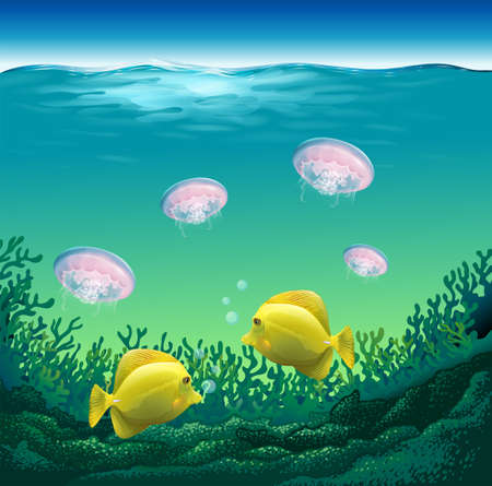 ocean fish: Ocean fish and jelly fish under the water Illustration