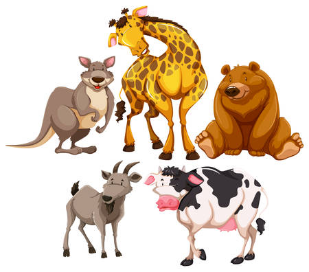 wild animal: Wild animal characters on white background Illustration