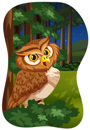 nature scenery: Brown owl sitting in a forest under bright stars Illustration