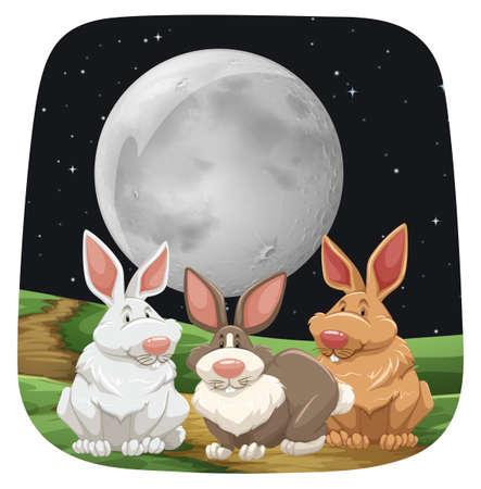 lapin blanc: Trois lapins mignons assis sous la pleine lune