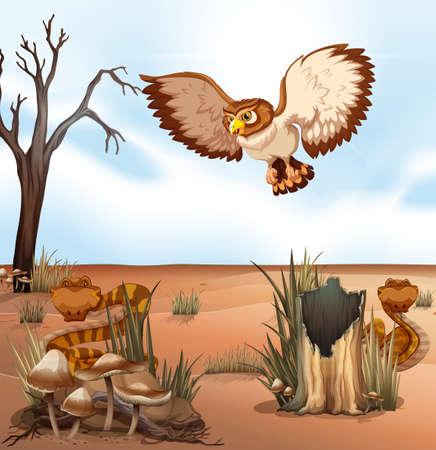 crawling creature: Wild animals in a desert Illustration