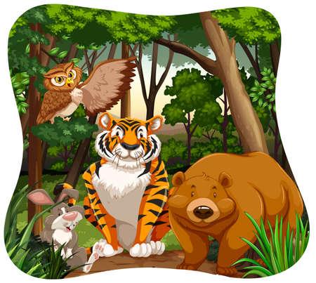 jungle scene: Different kind of animals in the jungle