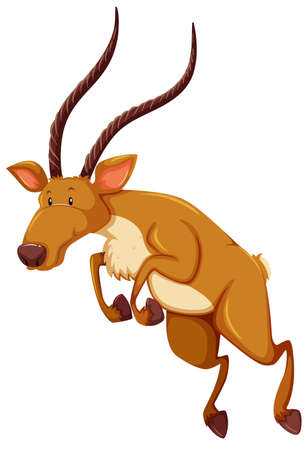 of antelope: Antelope with long horns in jumping position Illustration