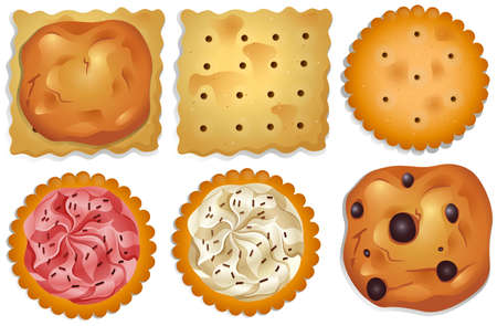 flavours: Different flavours cookies on a white background Illustration