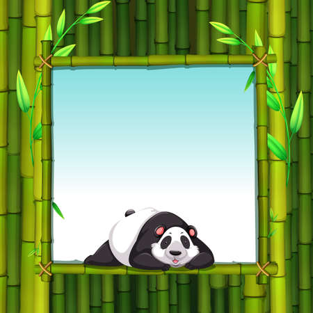 wild living: Frame of bamboo with a panda lying