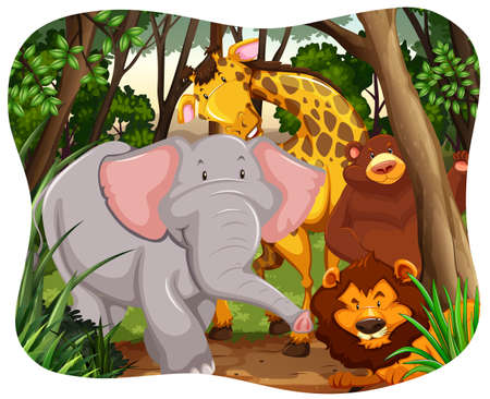 jungle animals: Wild animals in the middle of a jungle
