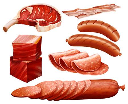 Conjunto de diferentes tipos de productos cárnicos Vectores