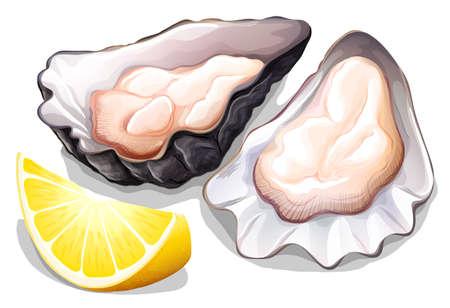 ostra: Ostra cruda con cáscara con una rodaja de limón Vectores