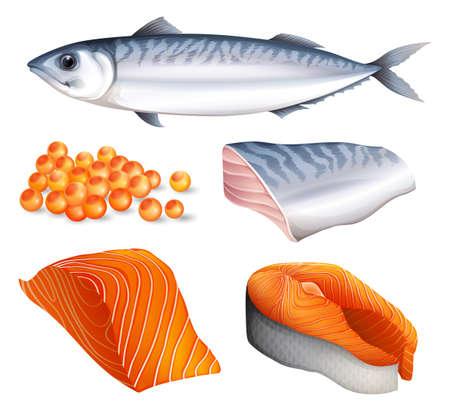 peces caricatura: Salmón en diferentes cortes y huevos de salmón