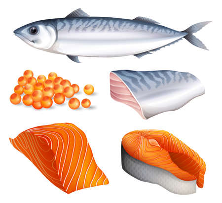 cartoon fish: Salmon in different cuts and salmon eggs