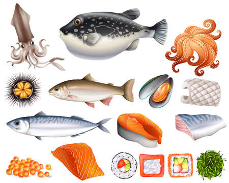 salmon fillet: Different kind of seafood raw and cooked