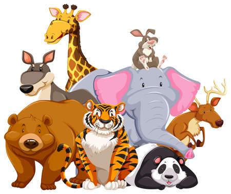 mates: Animals characters on white illustration Illustration