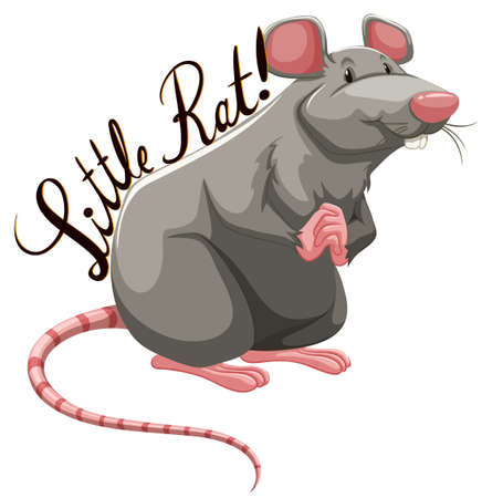 laying little: Little rat with text illustration Illustration