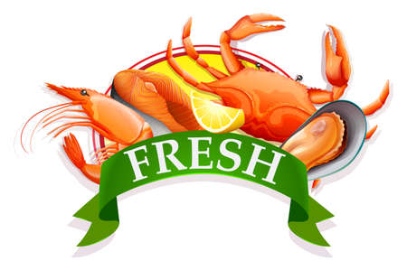 protien: Different kind of seafood with banner Illustration