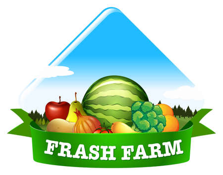 fresh vegetable: Banner if Fresh farm with fruit and vegetable Illustration