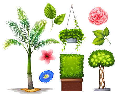 tree drawing: Different kind of plants in the garden