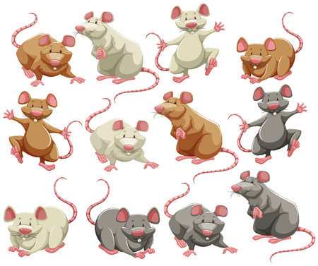 Mouse and rat in different colors Ilustração