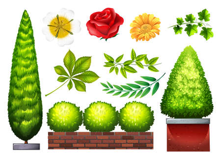 kinds: Gardening plants and flowers in many kinds Illustration