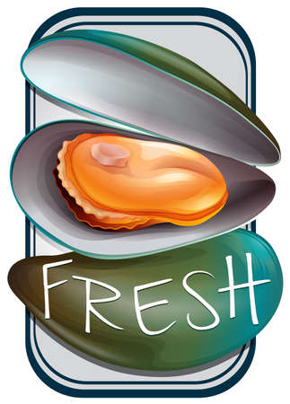 mussels: Fresh mussels in shell with text