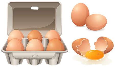 cartoon egg: Fresh chicken eggs in box
