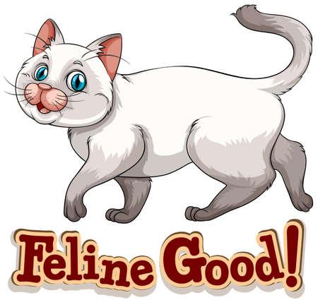 siamese: Nette kleine siamesische Katze mit kurzen Haaren